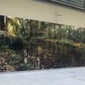 Susanne Wehmer, pintura hiperrealista, mural bosque