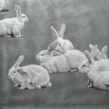 Susanne Wehmer - Pintura Hiperrealista - Bunnies #6