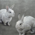 Susanne Wehmer - Pintura Hiperrealista - Bunnies #9